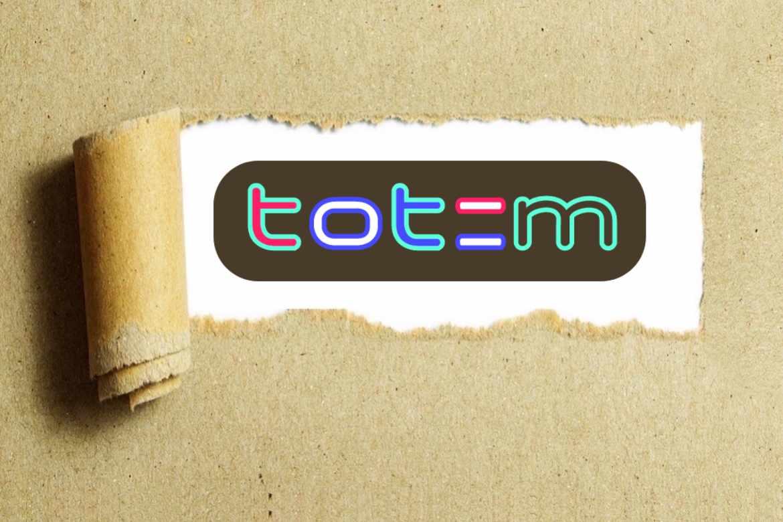 accounting totem idea technology company