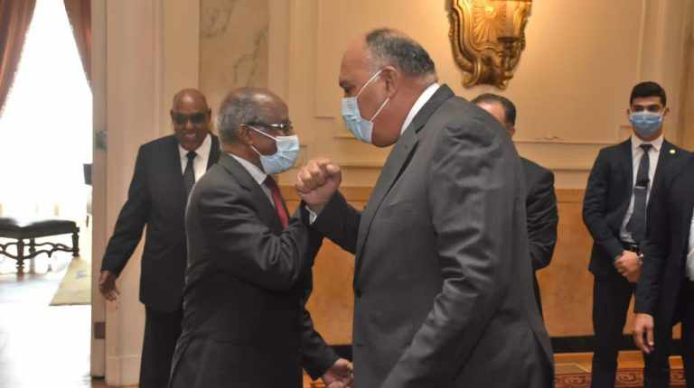 africa eritrea foreign ministers please