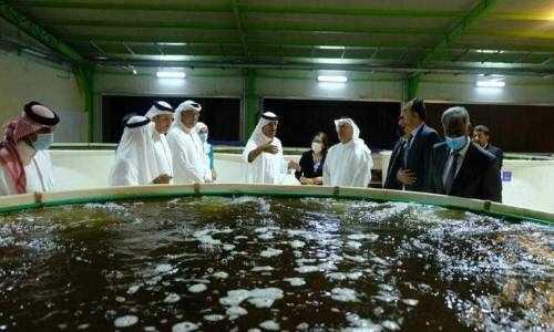 bahrain, dar, aqua, develop,