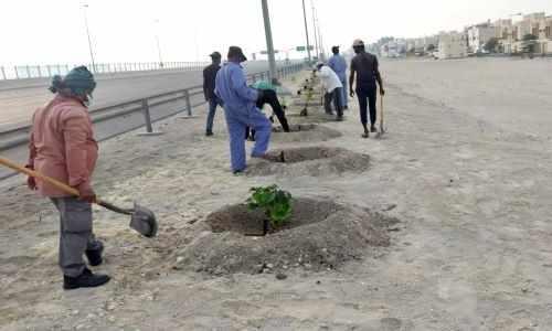 bahrain muharraq ring road beautification