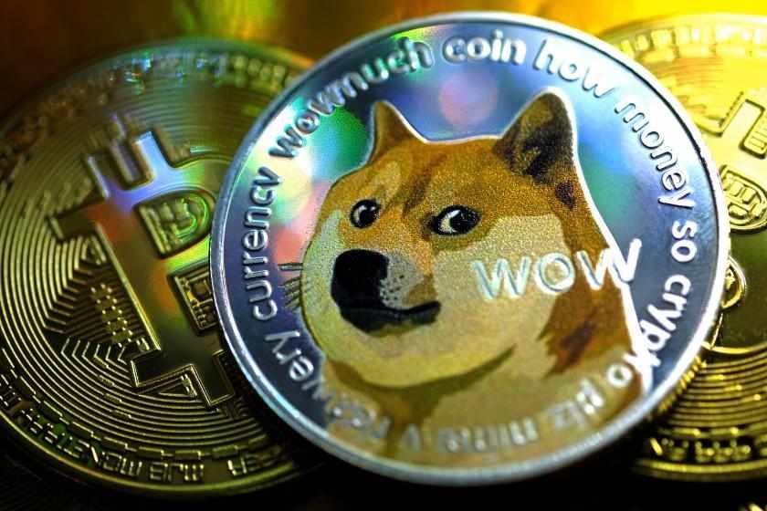 bitcoin dogecoin investment absurdity gamestop
