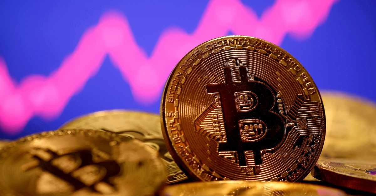 bitcoin musk losses triggered tumble