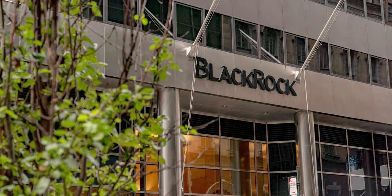 blackrock, shareholder, board, others, votes,