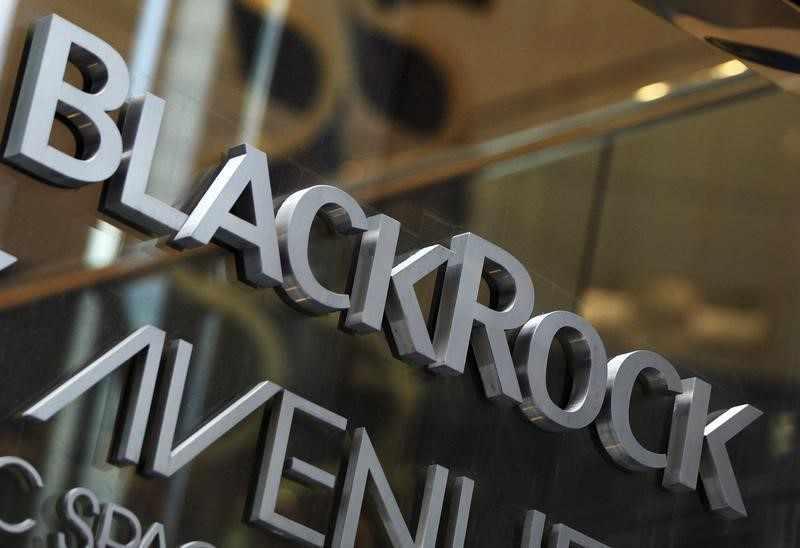 blackrock, votes, say, companies,