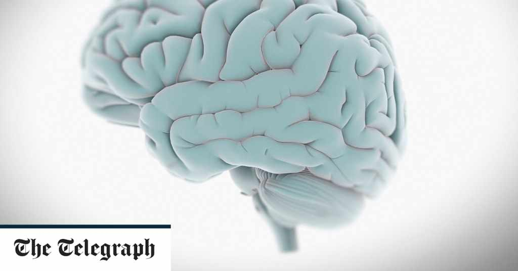 brain, mind, life, hand,