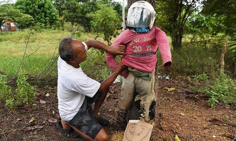 cambodian farmers scarecrows