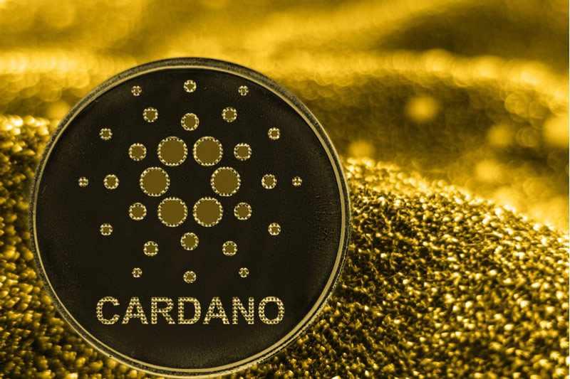 cardano climbs investors investing