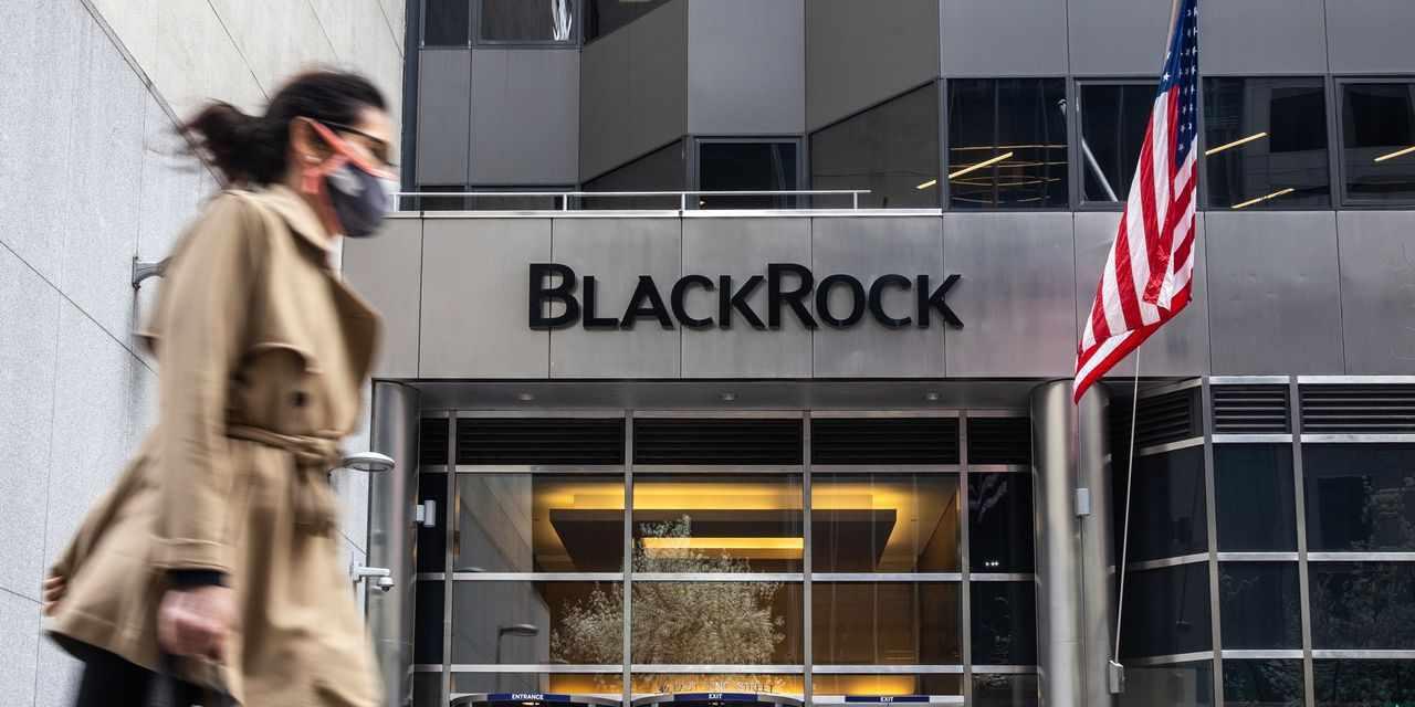 china blackrock mutual funds green