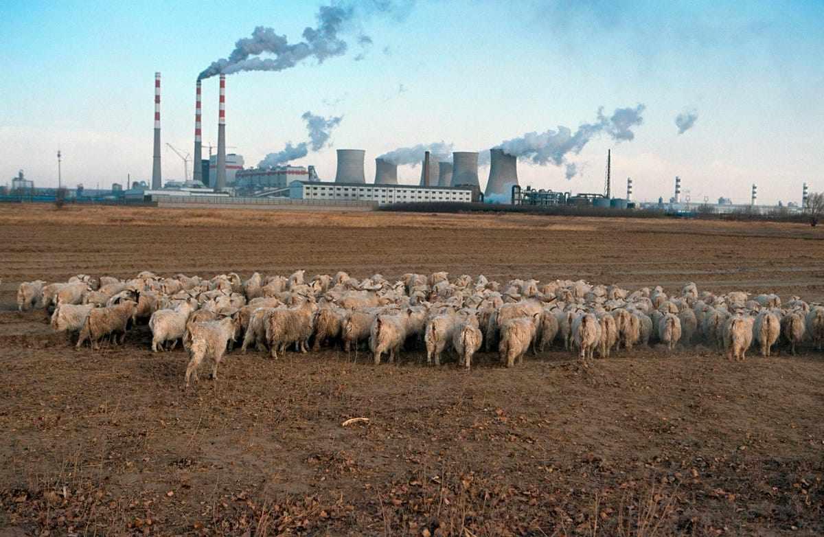 china, coal, global, dramatic, usage,