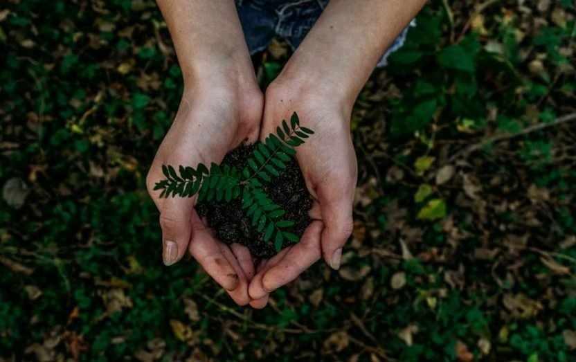 circular economy concerted efforts environment