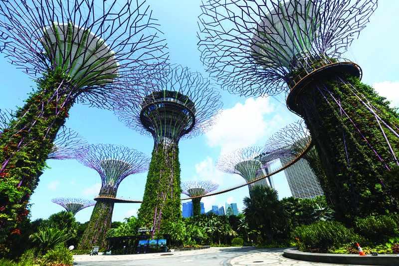 cities, world, urban, grey, jungle,