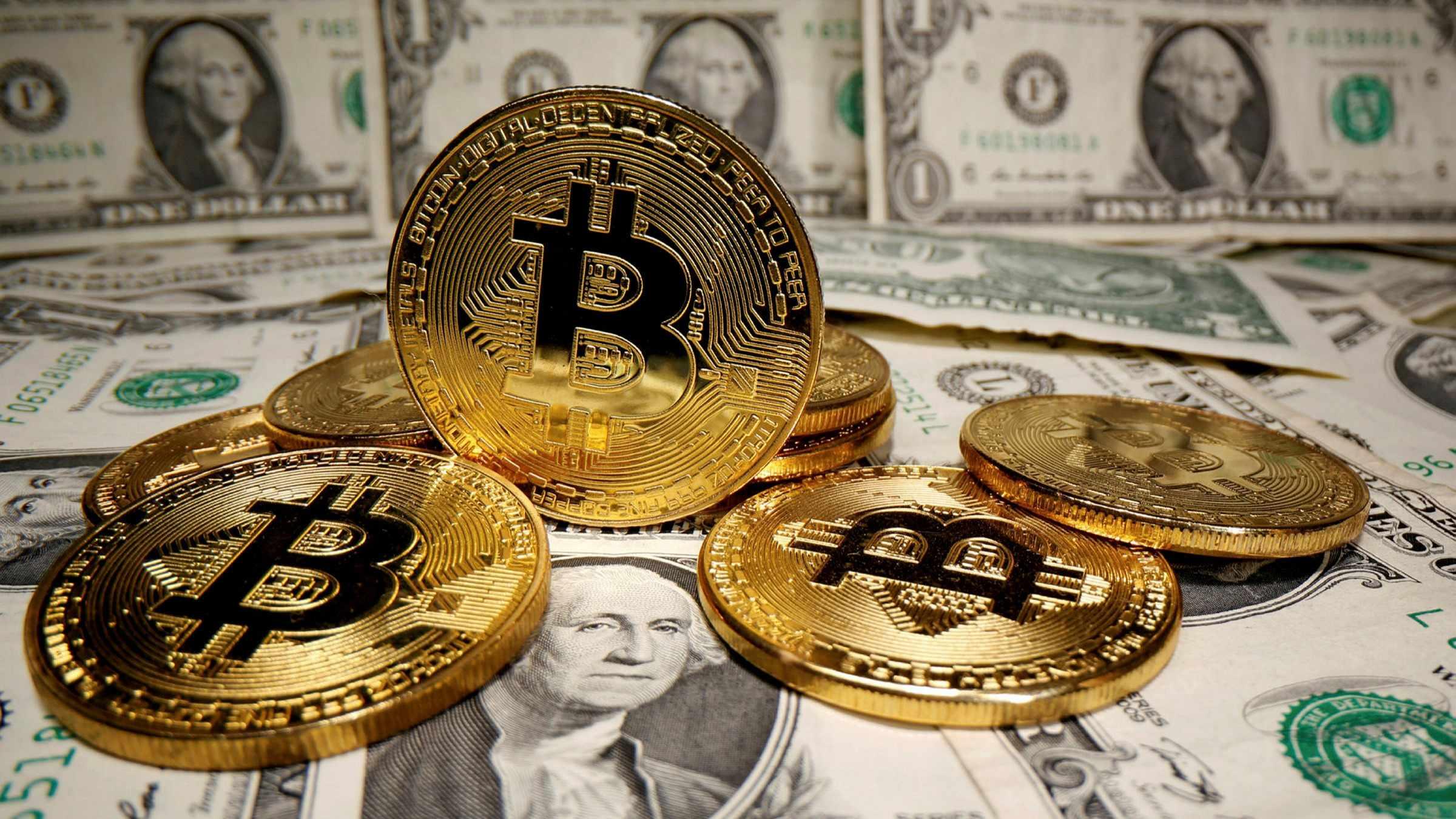 dib bitcoin credibility access