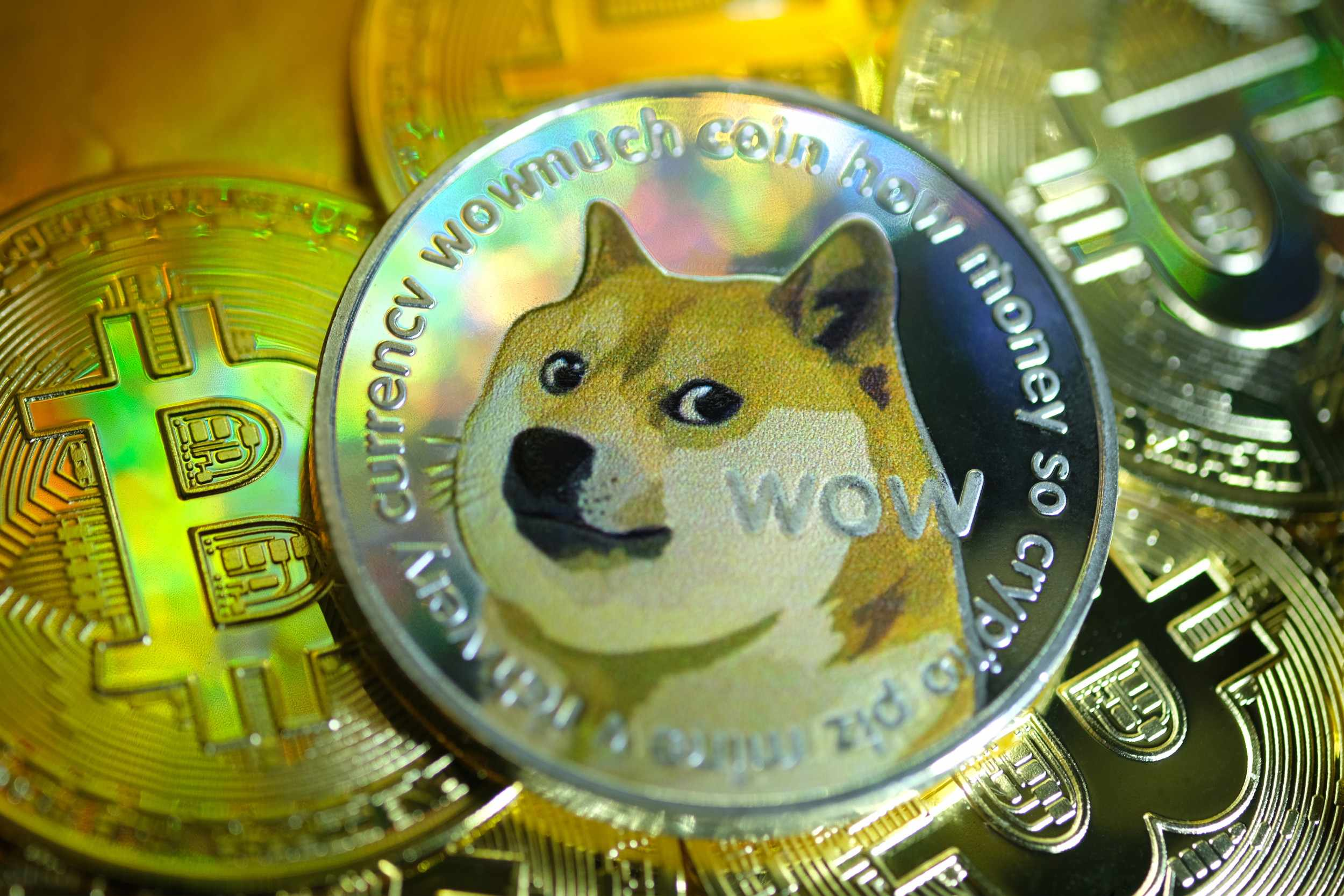 dogecoin creator dramatic plunge invests