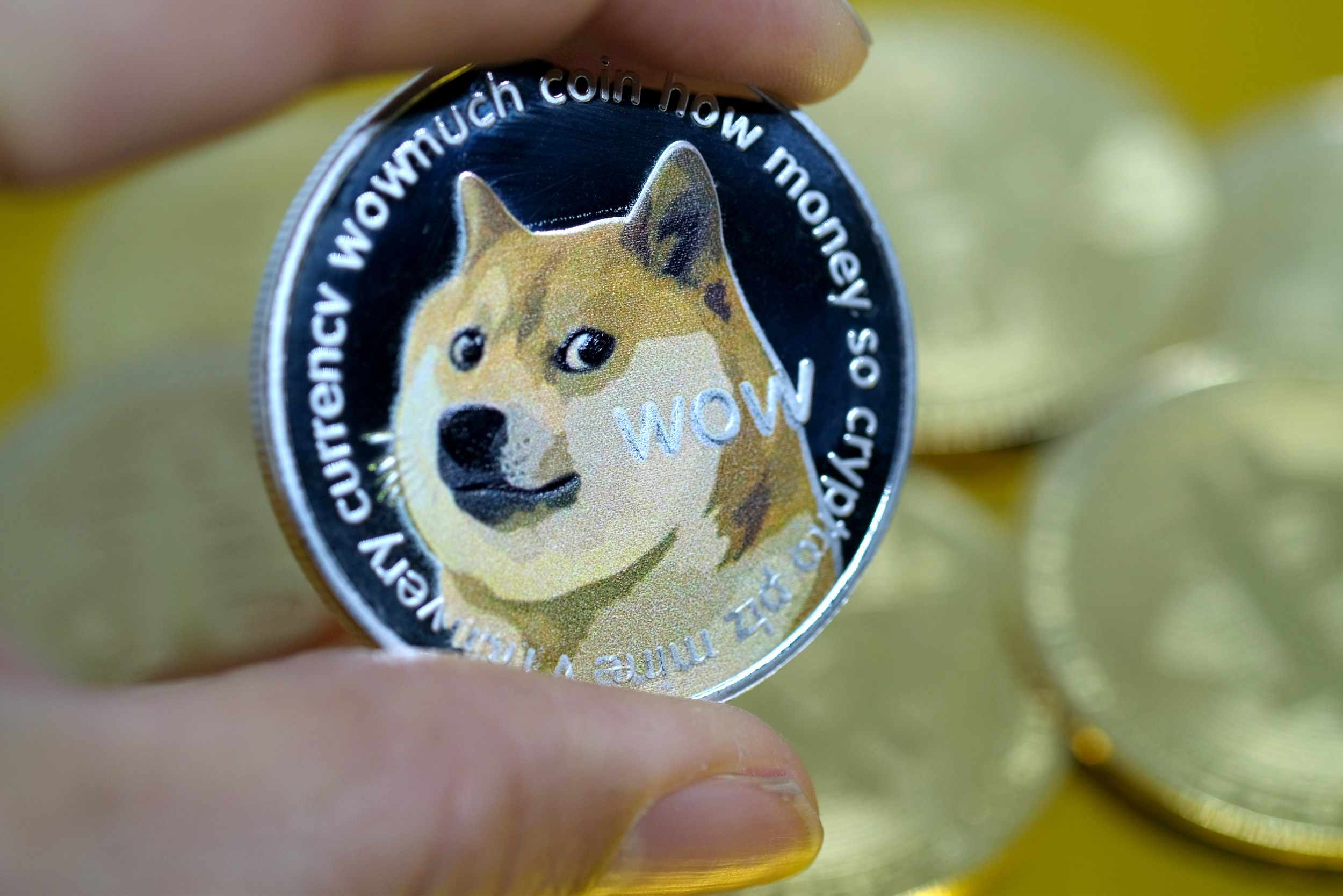 dogecoin currency ironic earth spikes