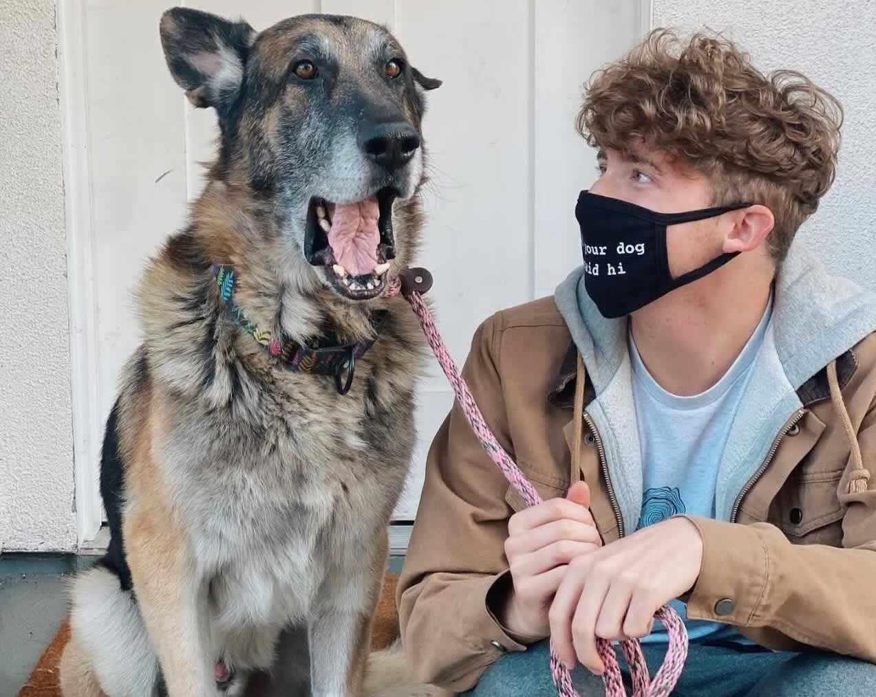 dogs nelson matt teen chico