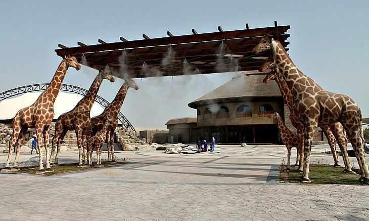 dubai park safari visitors