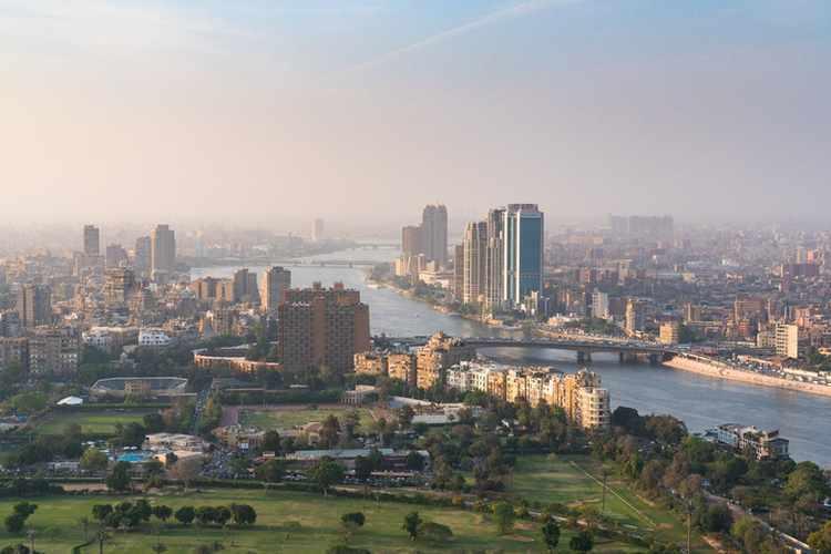 egypt business ctp parks company