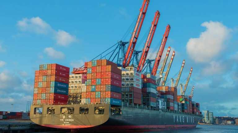 egypt exports enable mokannggxlavehstackpathdnscom security