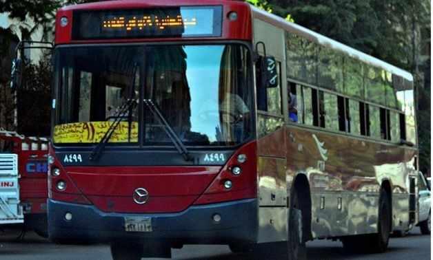 egypt government passenger fares mass
