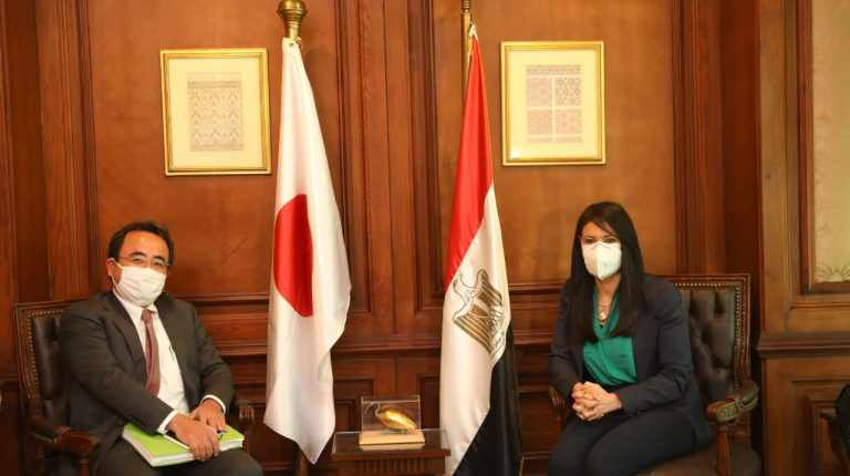 egypt japan bilateral cross sector