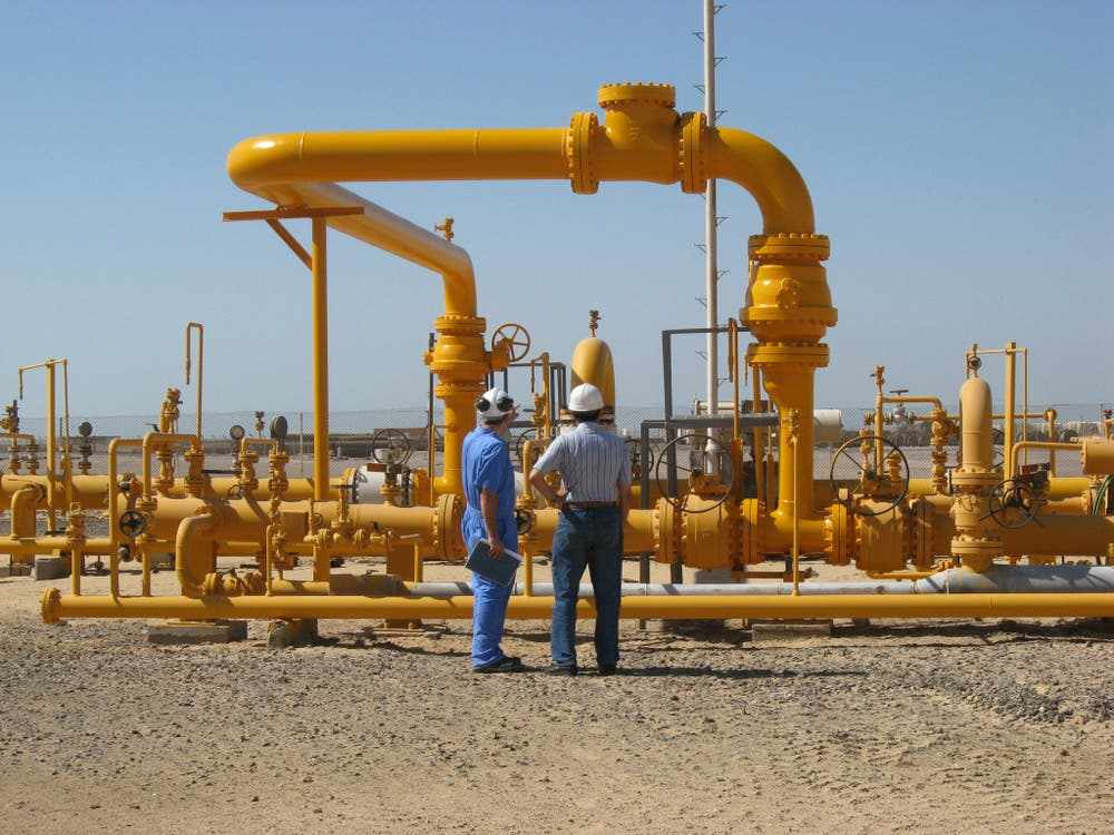 egypt oil gas witnesses percent