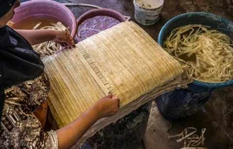 egypt, papyrus, tradition, makers, tourism,
