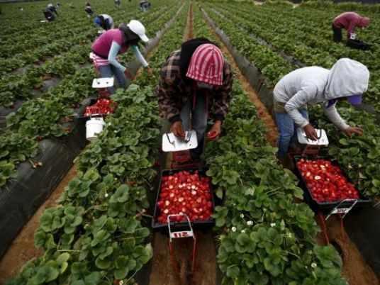 egypt pesticide quseir plan plans