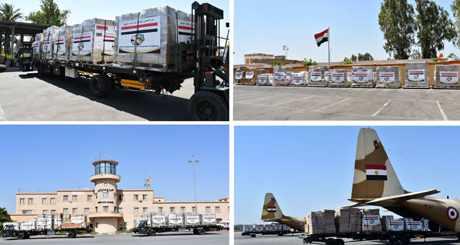 egypt planes medical aid djibouti