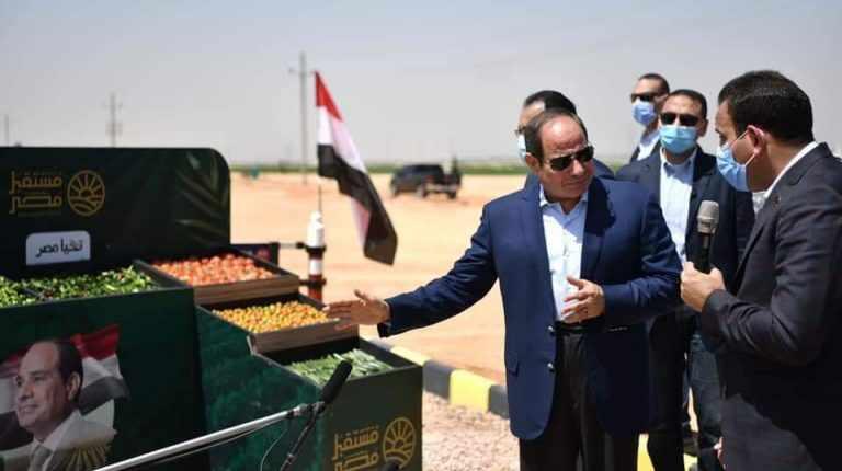 egypt sisi harvest season mega