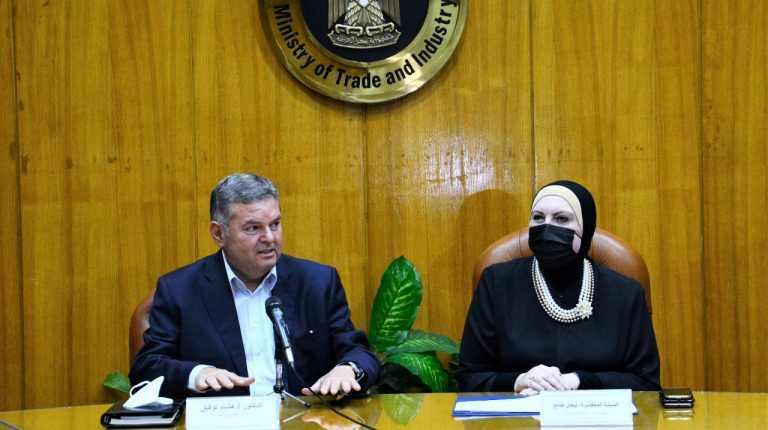 egypt trade public enterprise ministers