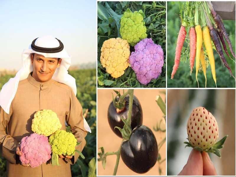 farmers labor shortage rising produce