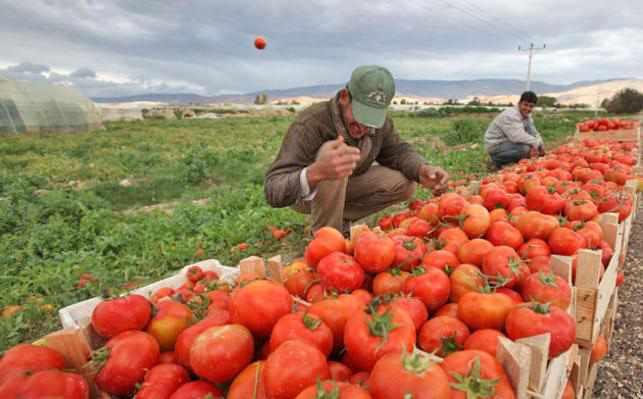 farmers, production, hike, jordan, union,
