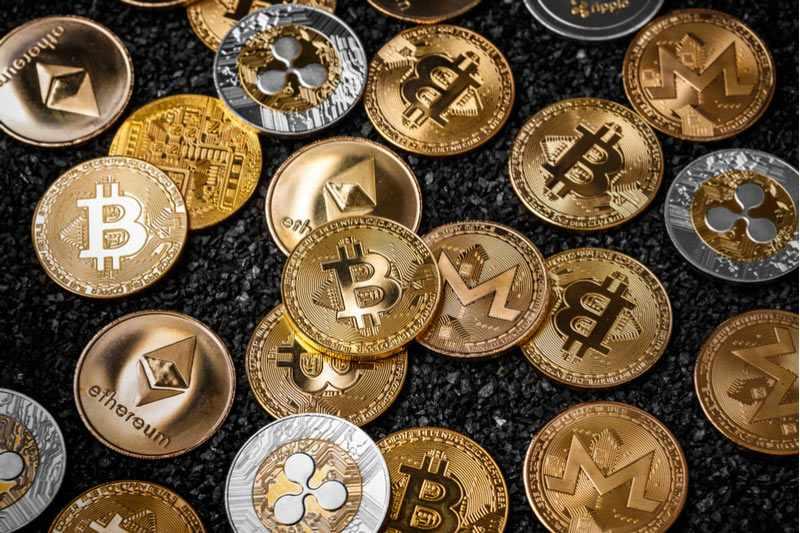 fence crypto bear market cointelegraph