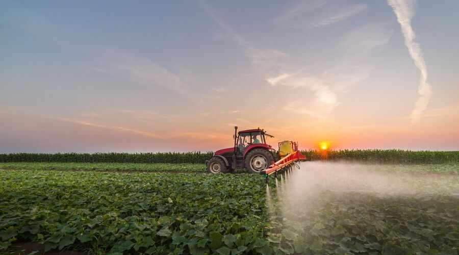 food decapolis traceability platform blockchain
