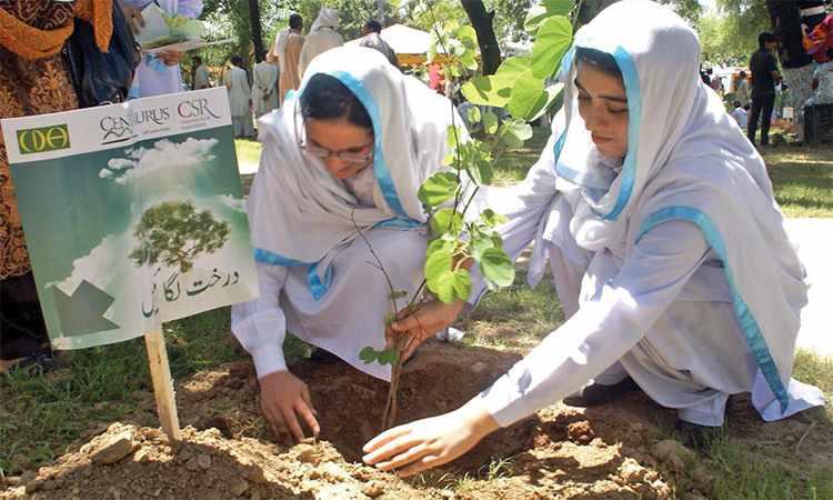 futuristic marks saplings extra students