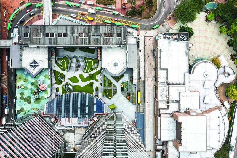 hong kong urban farms sprout