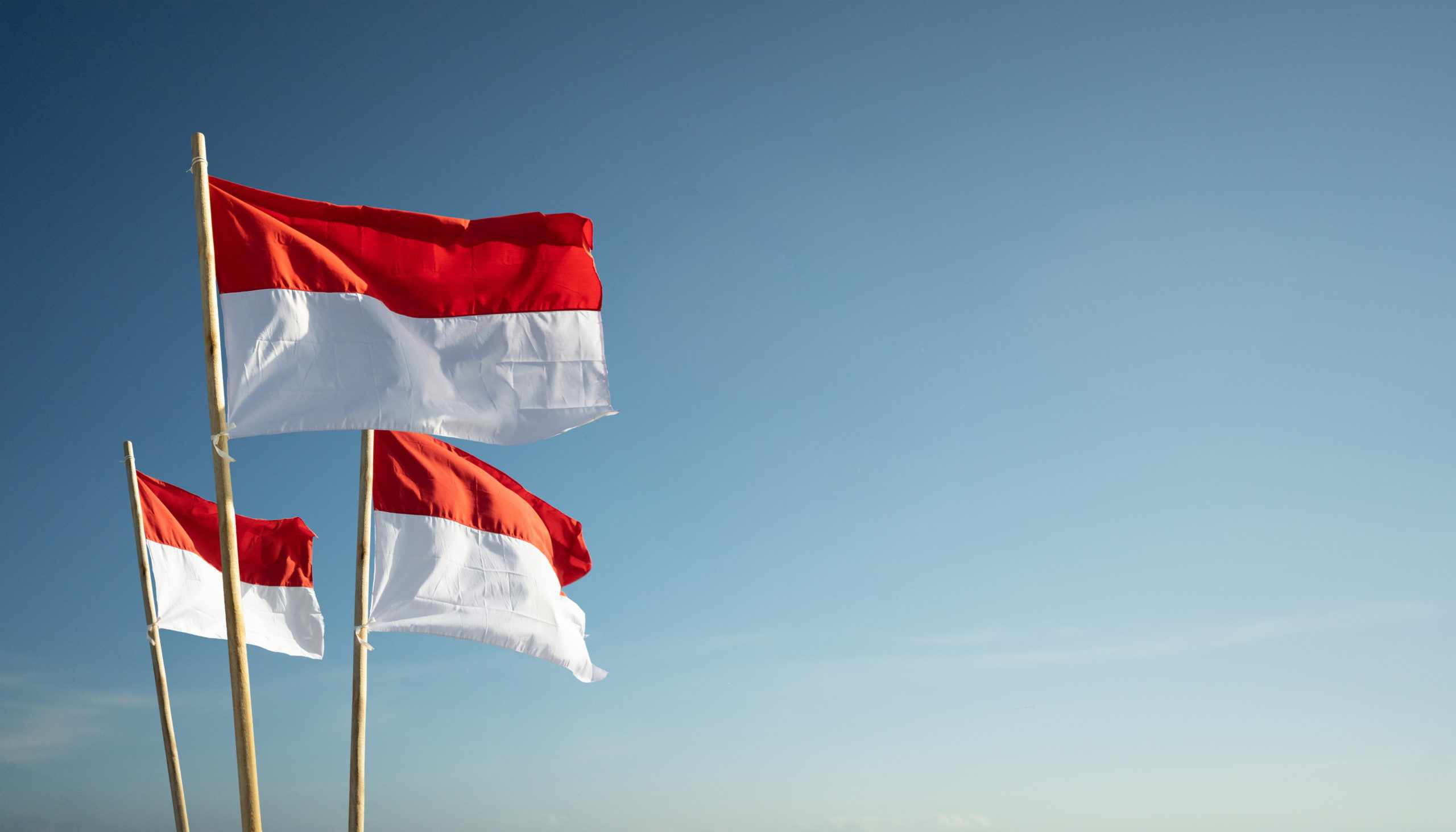 indonesia conocophillips buyers assets struggle