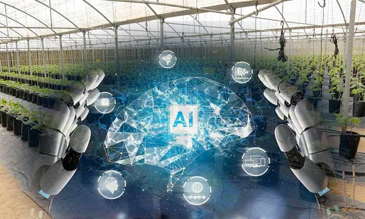 intelligence artificial agriculture impact dhabi