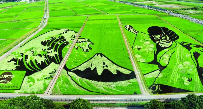 japan, olympics, planted, art, tokyo,