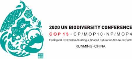 jordan, takes, part, biodiversity, conference,