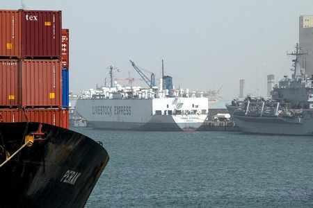 kuwait project port