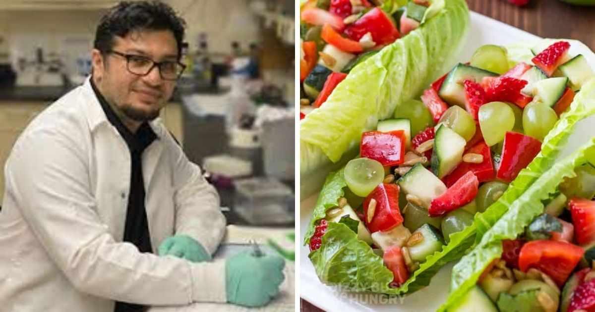 lebanon, levels, contamination, bacterial, salads,