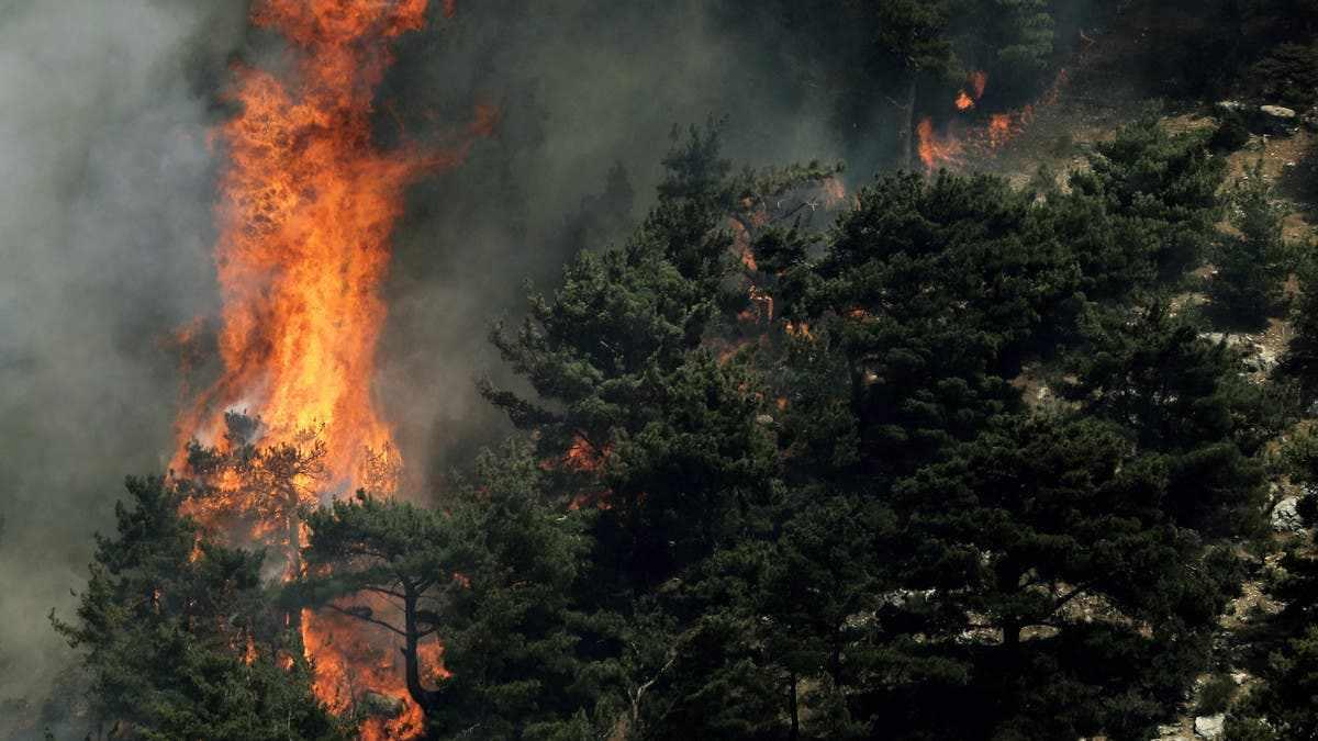 lebanon, north, wildfires, homes, pine,