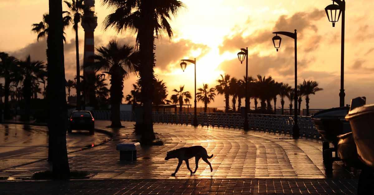 lebanon, reuters, cafes, beaches, covid,