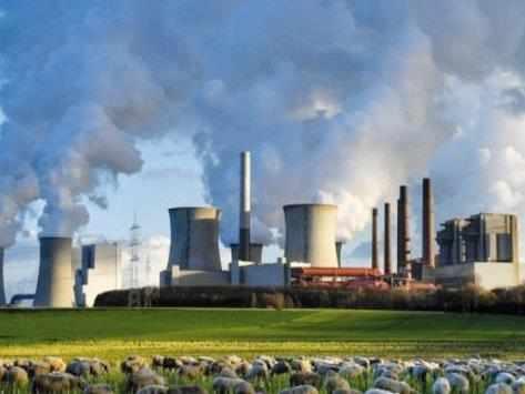 mena, carbon, pricing, gains,