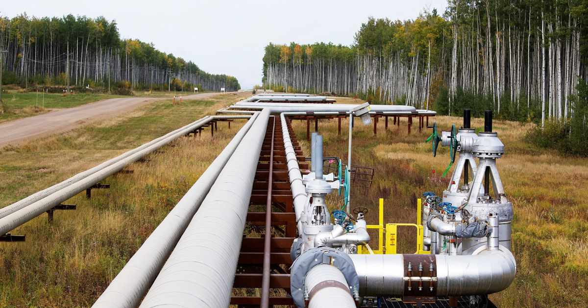 oil sands producers canada alliance