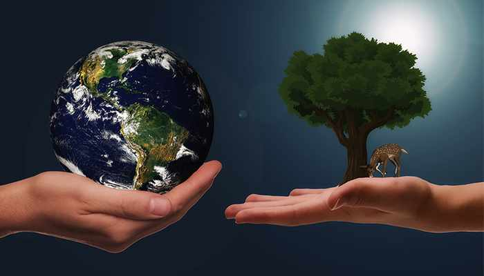 oman consumers report majority sustainably