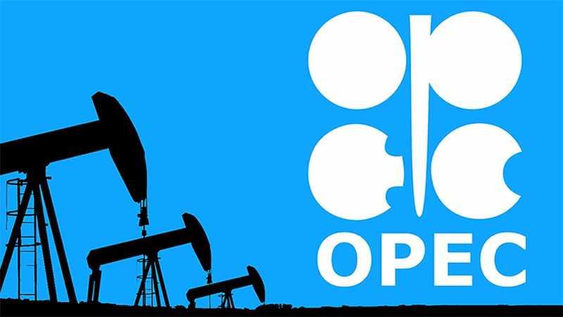 opec, oil, charge, arab,