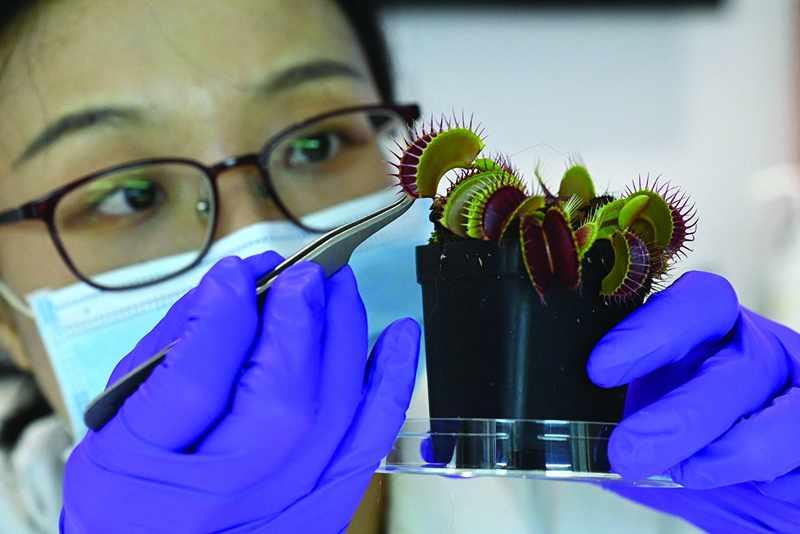 plants scientists robo tech nature