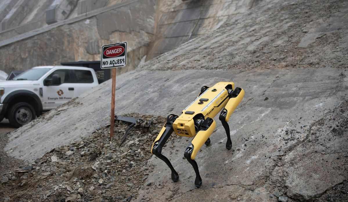 robot spot dog patrol
